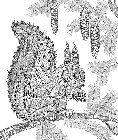 isolated squirrel: The squirrel for adult anti stress Coloring Page for art therapy, illustration in doodle style. Illustration
