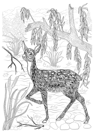 Coloring for adults. Young deer in the wild. The body is decorated with deer ornament. Hand drawing.
