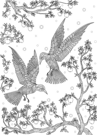 birds on branch: Hand drawn bird - Birds on a branch apple-tree. Coloring page.