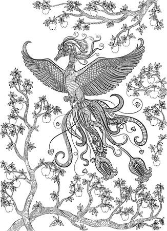 Hand Gezeichnet Vogel Vögel Auf Einem Zweig Apfelbaum Malvorlage