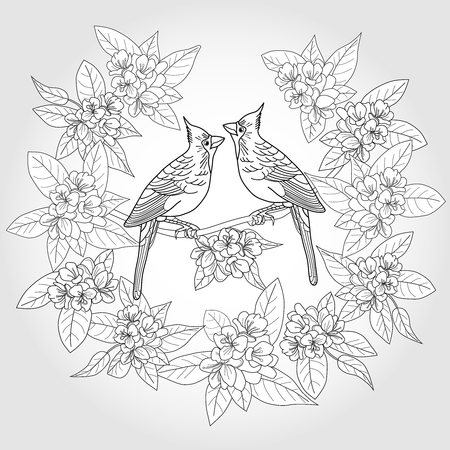 adults: Coloring page for adults with birds and flowers. Illustration