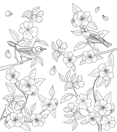Coloring page for adults with birds and flowers. Illustration