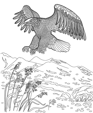 adults: Eagle hunting in-flight. Coloring book for adults.