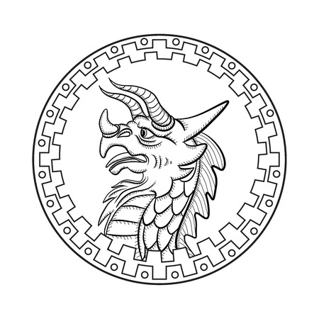 dragon head: Dragon head in the ethnic border. Coloring for adults. Zentangle. Illustration