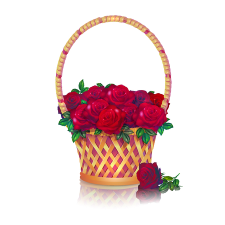 Basket with a bouquet of dark red roses white background.