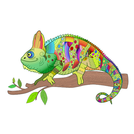Hand drawn decorative chameleon is sitting on a tree branch vector illustration.