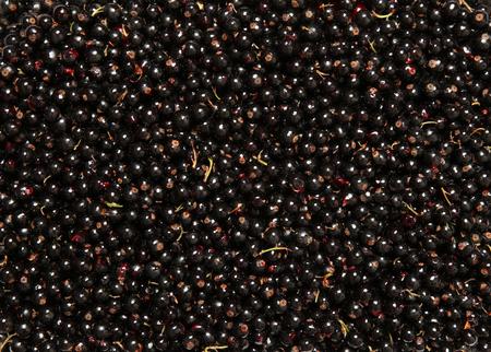 Background of ripe juicy black currant berries
