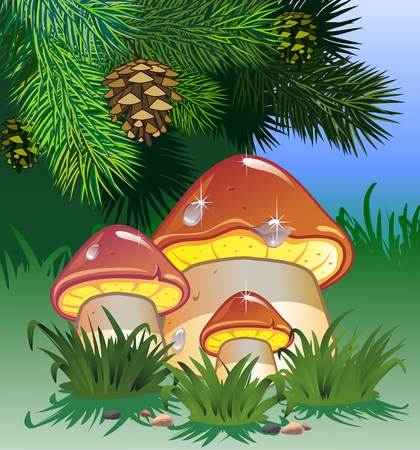 mushrooms in the forest Standard-Bild - 102218877