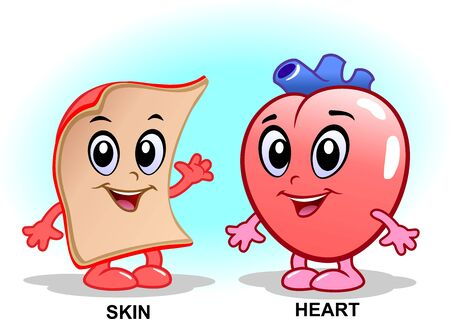Skin and heart with a face. Cartoon characters.
