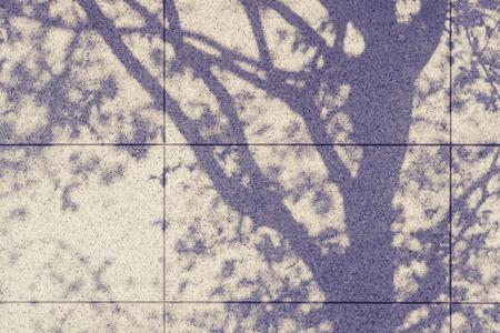 luz natural: Sombra del árbol en la pared natural de fondo abstracto