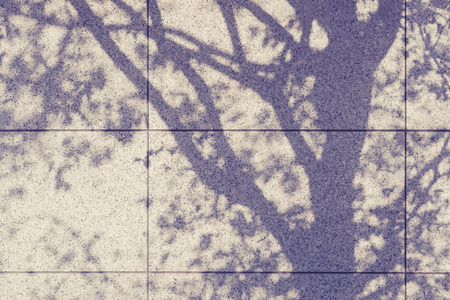 natural light: Tree shadow on wall Natural Abstract background