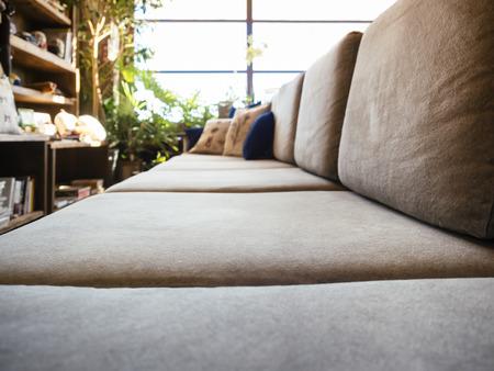 buen vivir: Pillows on Sofa seat in Living room Sunlight Window with Bookshelf