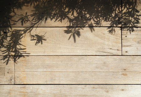 natural light: Tree leaves shadow on Wood planks Nature Abstract background
