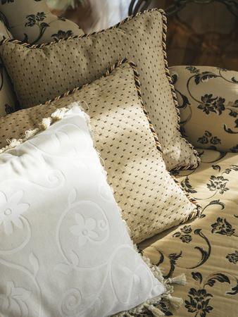 details: Pillows on sofa Interior Home decoration
