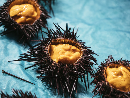 Sea urchin Japanese fresh raw food sell in Market