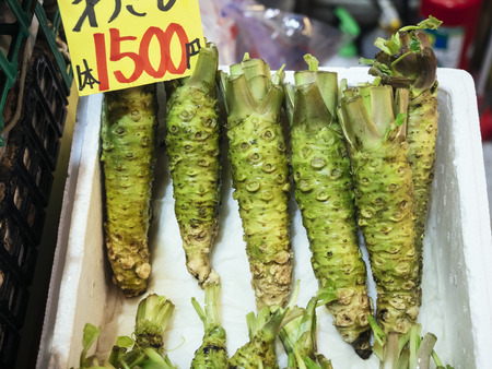 Wasabi Fresh Japanese horseradish sell in Market  Stock Photo
