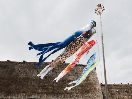일본 잉어 깃발 다채로운 잉어 기호 일본 축제