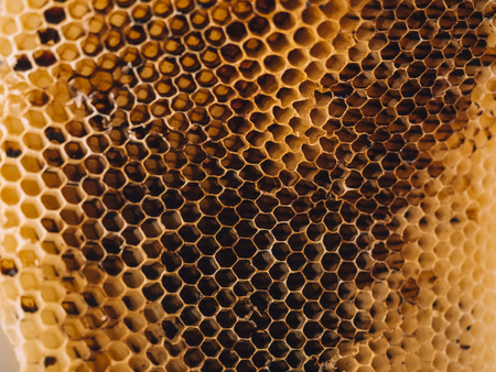 Beehive Honeycomb Nature Textured close up Banque d'images - 122241828