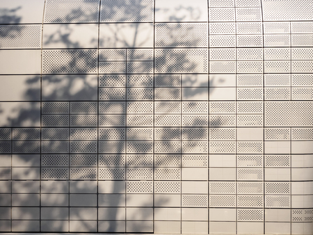 Wall tile Tree branches silhouette shade and shadow Nature abstract background