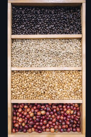 Coffee beans Display Various stages of roasting Green to Dark roasted Stockfoto