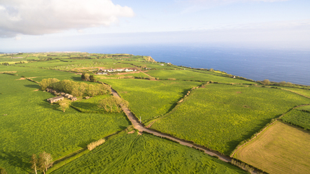 Green fields of Azores with atlantic ocean on background