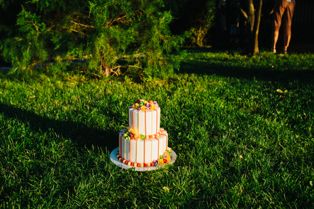 topper: Amazing luxury wedding cake on grass in sunset time. Surprise for groom and bride.