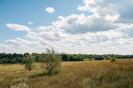 Ukraine. Summer landscape steppe, ecology scene. Erosion of natural landscape. Luhansk region Reklamní fotografie