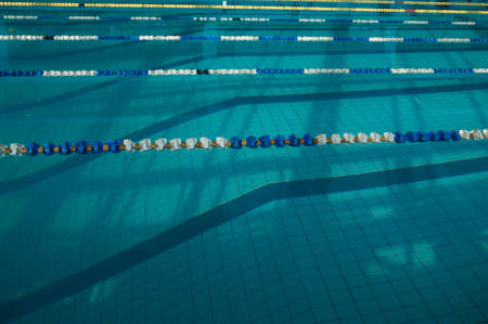 The sports swimming pool. Divided swimming lanes for swimmers,