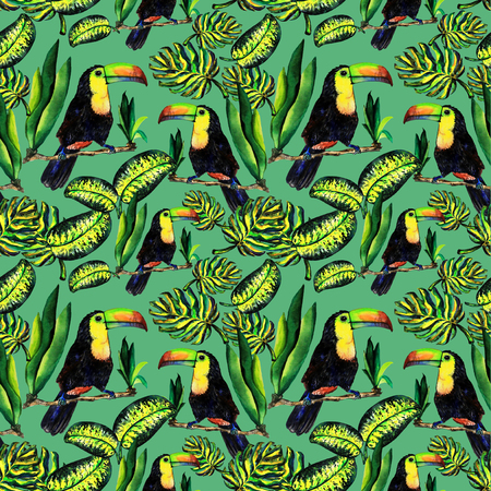 tera: Seamless pattern of leaves monstera and Toucan. Watercolor sheet