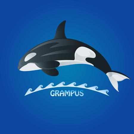 orcinus: killer whale