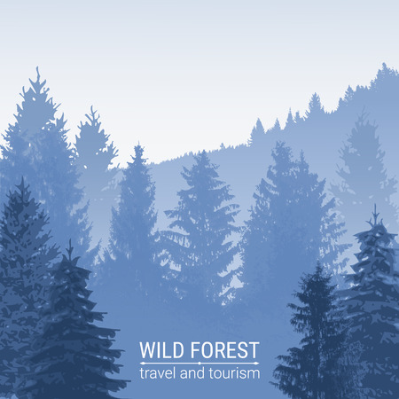 fog forest: Wild forest. Pine and spruce on the hills. The horizon line in the fog. Abstract blue background. Silhouettes of trees. Environmental colorful banner. Tourism and travel. Vector.