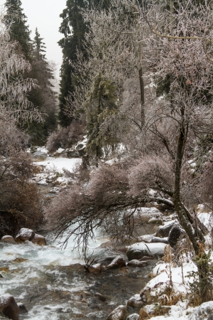 Picturesque winter landscape of frozen trees and river,Almaty, Kazakhstan, Asia Stock Photo - 18381649
