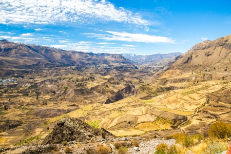 Colca Canyon, Peru,South America  The Incas  to build Farming terraces  with Pond and Cliff  One of the deepest canyons in the world