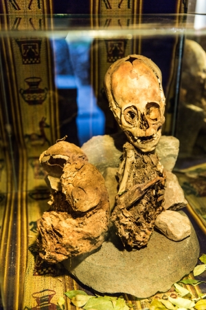 Embalmed mummy and skull in Peru. Bones at Chauchilla archeological site, Nazca, South America photo