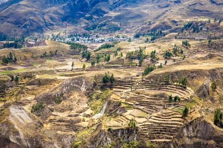 the deepest: Ca��n del Colca, Per�, Am�rica del Sur. Incas para construir terrazas de cultivo con estanque y Cliff. Uno de los ca�ones m�s profundos del mundo Foto de archivo