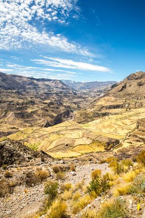 the deepest: Ca��n del Colca, Per�, Am�rica del Sur Incas para construir terrazas de cultivo con estanque y Cliff Uno de los ca�ones m�s profundos del mundo Foto de archivo