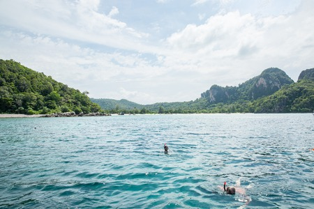 phi phi: Snorkeling on the Koh Phi Phi island, Thailand