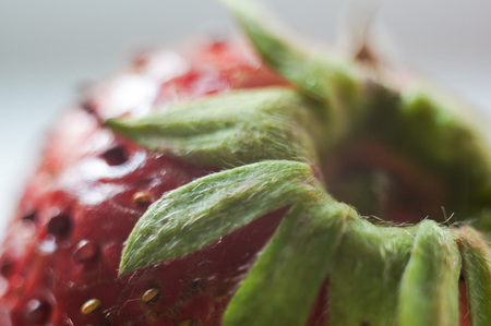Strawberry close-up. macro photography.