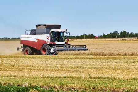 hot summer: La cosecha de trigo en un d�a caluroso de verano
