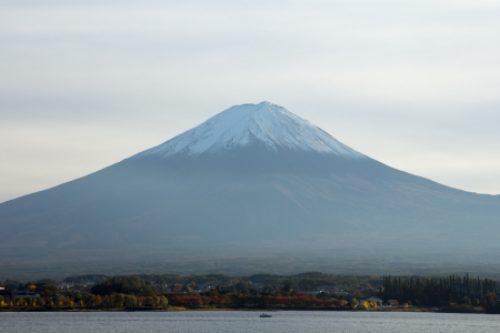 fuji san: Fuji san
