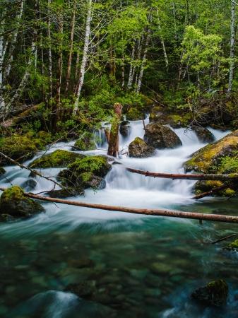 vancouver island: Snow Creek waterfall