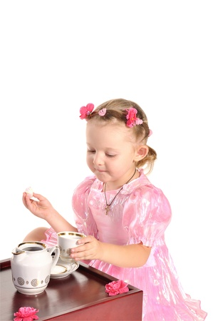 nice little princess in beautiful pink dress having tea with zephyr  isolated on white background Stock Photo - 11885047
