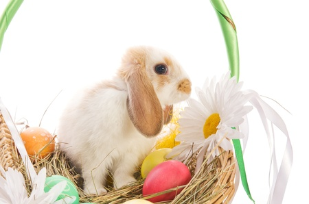 Easter Bunny in a basket with eggs and ribbons, isolated on white background photo