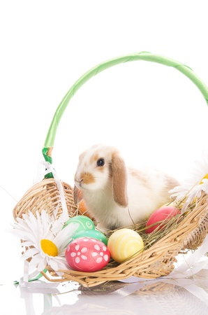 Easter Bunny in a basket with eggs and ribbons, isolated on white background Stock Photo - 13057390
