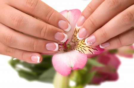 nail care for women's hands, isolated on white background Stock Photo - 17784644