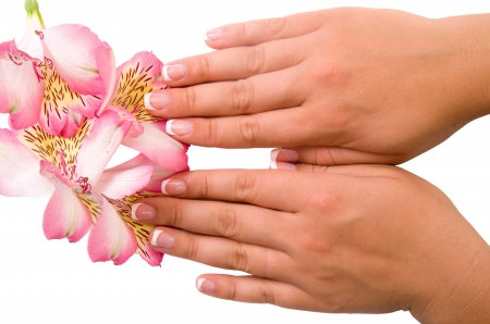 nail care for women's hands, isolated on white background Stock Photo - 17784636
