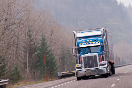 hiway: Big classic rig in blue driving on hiway with forest background
