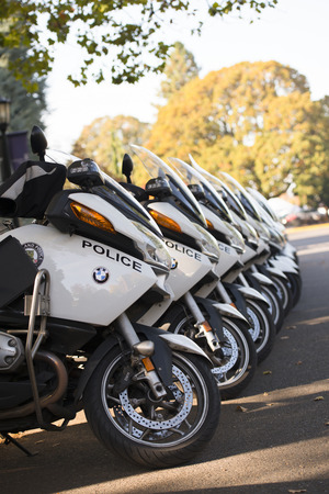a white police motorcycle: White modern police bikes line on the green and yellow trees background