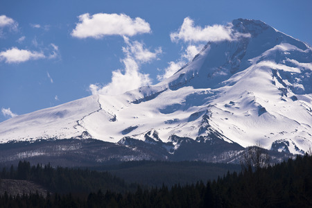 Close view of Mount Hood, covered with white snow and surrounded by white light clouds in the blue sky and the forests at the foot of the mountain  photo
