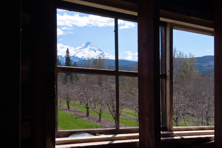 remnants: Impressively beautiful spring landscape with orchard and snowy mountain behind the old wooden window without glass Stock Photo